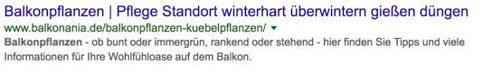Screenshot-schlechtes-Beispiel-Balkonpflanzen-winterhart